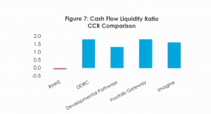 Cash Flow Liquidity